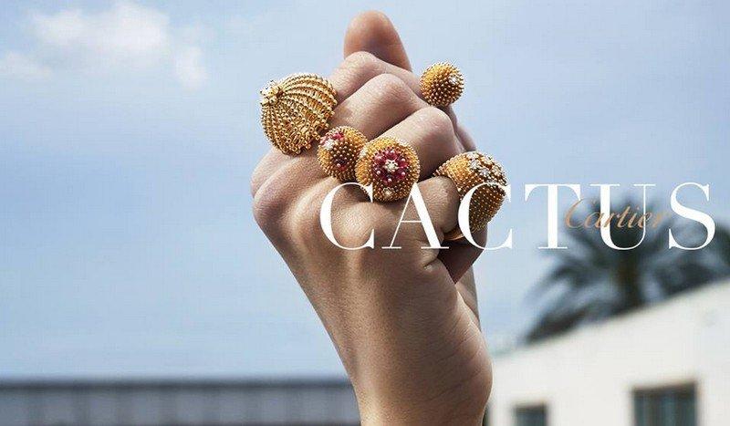 NOVÝ CACTUS DE Cartier
